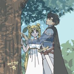 Serena & Darien ~ The Princess of the Moon & The Prince of the Earth
