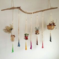A macrame plant hanger is a great idea for any space. Throw it back to style with an adorable macrame plant hanger! Add more greenery and life to room! Macrame Plant Hanger Patterns, Free Macrame Patterns, Ideias Diy, Unique Plants, Macrame Projects, Diy Macrame, Macrame Knots, Hanging Plants, Hanging Baskets