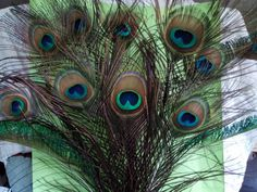 Peacock Feather Bouquet 3 Frame Feathers 9 All by CherylsGoodStuff, $8.00