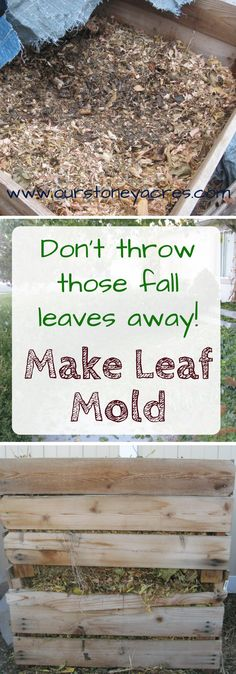 #2 Make Leaf Mold . Dealing with fall leaves – Making Leaf Mold    Dec.  7,  2011  Dealing with Fall Leaves in your yard and garden can be a challenge.  But this simple method will let you use those leaves to improve your soil.  Turn those leaves into Leaf Mold.