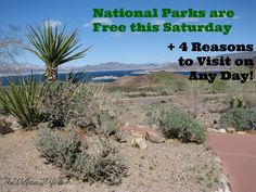 National Parks are Free this Saturday + 4 Reasons to Visit on any Day! www.thewellnesswife.com