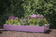 #Garten #Hochbeet #Pflanztrog #Pflanzgefäß #Edelrostoptik #Cortenstahl #Stahl #Metall Plants, Corten Steel, Light Rose, Metal, Plant, Planets