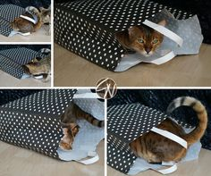 Katzen lieben Papiertüten :-) Cats love paper bags Louis Vuitton Damier, Diy, Bags, Handbags, Bricolage, Do It Yourself, Homemade, Diys, Bag