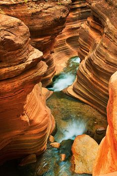 America Photograph - Deer Creek Slot by Inge Johnsson Grand Canyon Arizona, Grand Canyon National Park, Us National Parks, Grand Canyon Photography, Nature Photography, Long Pictures, Travel Pictures, Natural Structures, Art Plastique