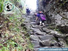 http://www.cuscotraveltreks.com/inca-trail-short-2-days.html,  Cusco travel and Treks Company offer you an unforgettable trip along the magic Inca trail in two days. This trek is an excellent option for those who want to experience the beauty and wonder of arriving to Machu Picchu on the Inca Trail, but you have less time or physical ability to do a more extended trek. #cusco, #peru, #cuscotraveltreks, #travel, #treks, #tours, #incatrail, #incatrailshort,