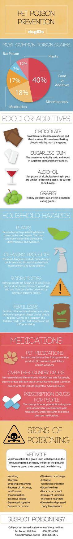 Pet Poison Prevention Infographic