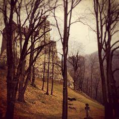 Bran Castle #dracula #Transylvania