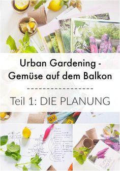 Lust auf Paprika, Zucchini & Salat vpm Balkon? Meine Planung für Gemüse auf dem Balkon & Tipps zur Umsetzung