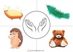 okul öncesi duyu organları öğretimi « Evimin Altın Topu