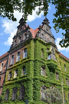 bastille tour switzerland