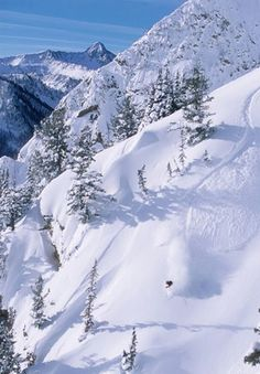 "UTAH ... more than 500 inches of highly addictive ""fresh pow"" each year at 14 world-class ski resorts ... Greatest Snow on Earth."