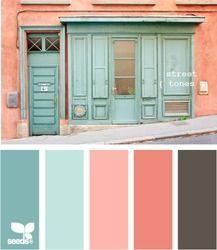 coral and aqua with charcoal-brown.