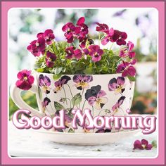 Goog Morning, Morning Greeting, Mornings, Cards, Good Morning Funny, Acre, Maps, Playing Cards