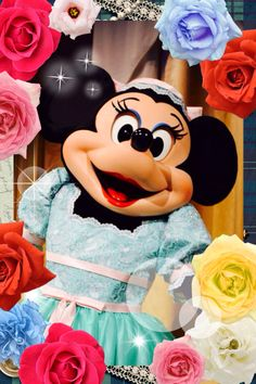 Beautiful Minnie Mouse