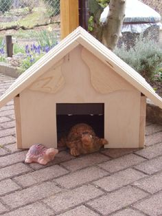 This is a SUPER CUTE tortoise house but it needs a bigger doorway