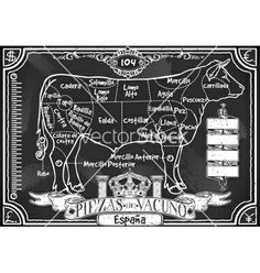 Vintage blackboard of spanish cut of beef vector - by Auriel on VectorStock®