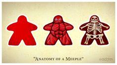 Anatomy of a Meeple