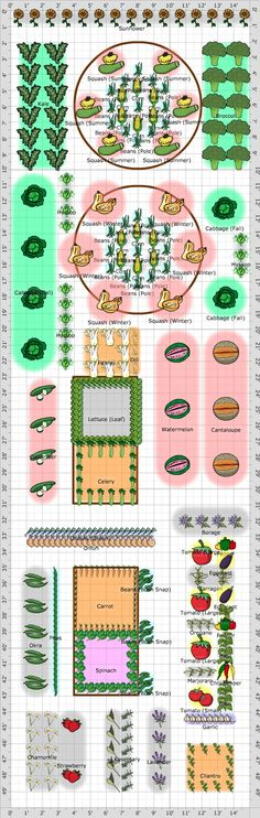 Garden Plan - 2014: Victory Garden, love this plan which includes plants to bring in pollinators.  A good starting point for my own plans, showing what can be done in a reasonably manageable area.