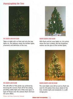 Christmas tree photo tips