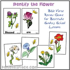 Identify the Flower Bible Verse Review Game for Sunday School Beatitude Lesson from www.daniellesplace.com