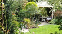 Schritt für Schritt zum Traumgarten - Mein schöner Garten