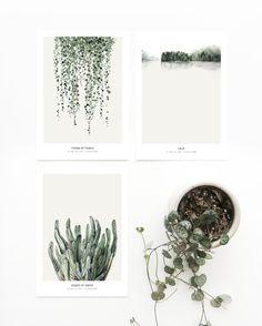 Postcard set 'Botanics' printed on white 270 g. cardboard paper.The graphics can…