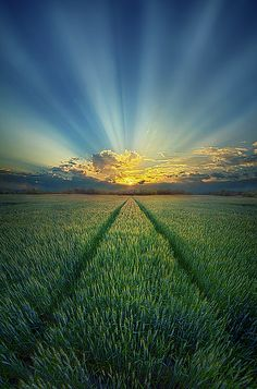 Give Us This Day | by Phil Koch
