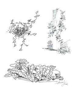 藤蔓来自十里only的图片分享-堆糖网;