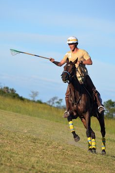 Gathering with all the top Polocrosse players at Antelope Park. A weekend with speed and adrenalin! Picture Video, Riding Helmets, Action, Polo, Horses, Group Action, Polos, Horse, Polo Shirt