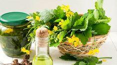 Korn, Herbs, Body Fitness, Nature, Diy, Syrup, Naturaleza, Bricolage, Herb