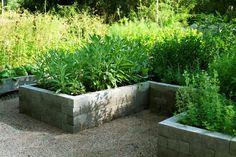 Istutuslaatikko Rajauskivestä - Modulit - Kekkilä Valmispiha Veg Garden, Trees To Plant, Therapy, Gardening, Kitchen, Plants, Vegetable Garden, Cooking, Tree Planting