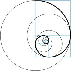 MusE logo - golden ratio + spiral 700.png
