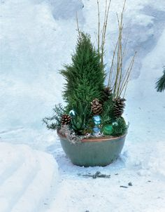 If you're striving for a garden with four-season appeal, don't overlook your containers. Here are 6 winter container ideas that never fail. Christmas Planters, Christmas Garden, Outdoor Christmas, Winter Garden, Christmas Ideas, Christmas Decorations, Christmas Porch, Winter Container Gardening, Fine Gardening