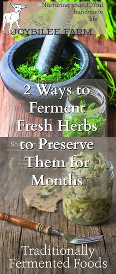 Fermented Fresh Herbs from Traditionally Fermented Foods