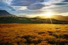 new zealand nature - Google Search