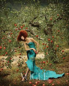 가을 볕, 드레스의 향연 :: VOGUE KOREA