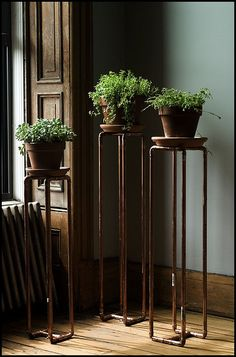 new plant stands out of copper pipe by fast boy, via Flickr
