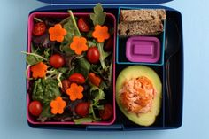 Everyday Bento | Healthy Ideas for Kids