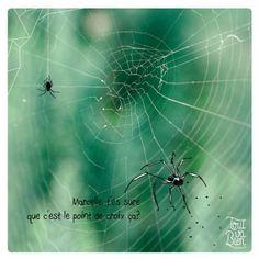 Spiders _ by Tout va Bien-design