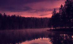 Finlandia, instantáneas en el país del invierno...