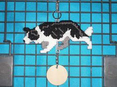 Border Collie crate tag kennel art dog accessory or home decor hand stitched needlepoint by dog artist
