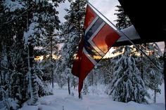 Flagget til Norge
