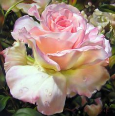 "Lyn Diefenbach, ""Sweet Communion,"" May 2009, Pastel on Ampersand Pastelbord, 18 x 18 in. Sold. The white Ampersand Pastelbord lent itself beautifully to achieving the soft transition of colours. Dew drops are always fun to include and are more about what you leave out than what you put in."