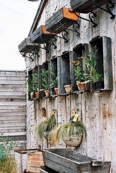 Old crates mounted to wall, and on brackets for garden display. Fabulous! from Terrain at Styer's - Glen Mills, PA....@Trish Papadakos Papadakos Barnes !!!!!!  I was JUST going to tag this as something that would make me FURIOUS at Styers!!!!!