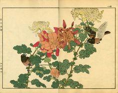 chinese brush painting chrysanthemum - Поиск в Google