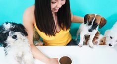 Dog Cafe LA Featured