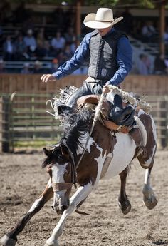 Baker County Fair and Panhandle Rodeo in Halfway Oregon Sept 2014.