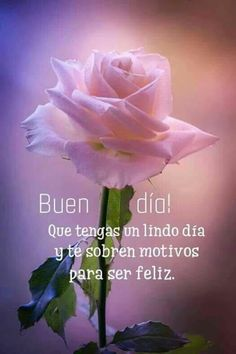 Buen día Morning Love, Good Morning Greetings, Good Morning Good Night, Good Morning Quotes, Good Day, Morning Thoughts, Travel Couple Quotes, Always Remember You, Morning Messages