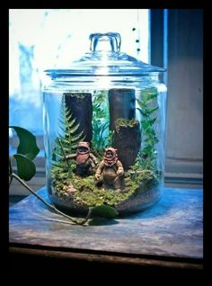 Ewok terrarium--this would be an excellent housewarming gift for Dan!