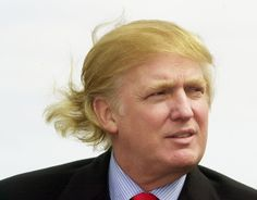 Trump - this is my guy. but i'll stay away from politics,,lol Donald Trump Hair, Like A Storm, Hair Evolution, Current President, Stained Teeth, Comb Over, Vanity Fair, Playboy, Eyebrows